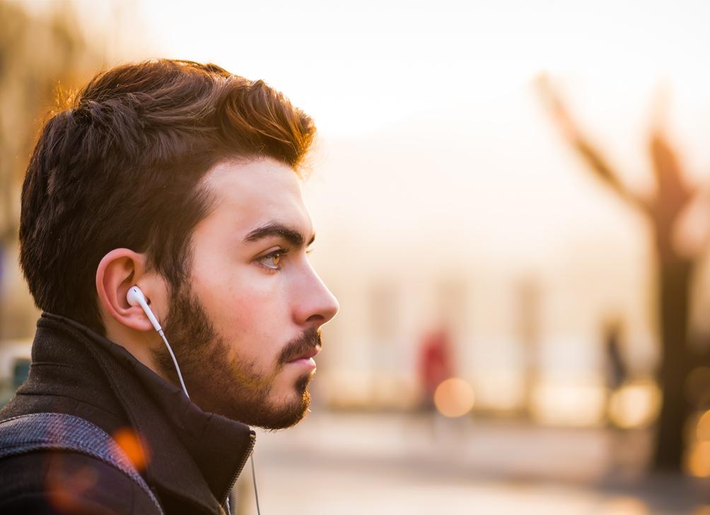 tipos de orejas que existen